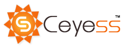 Ceyess Consulting