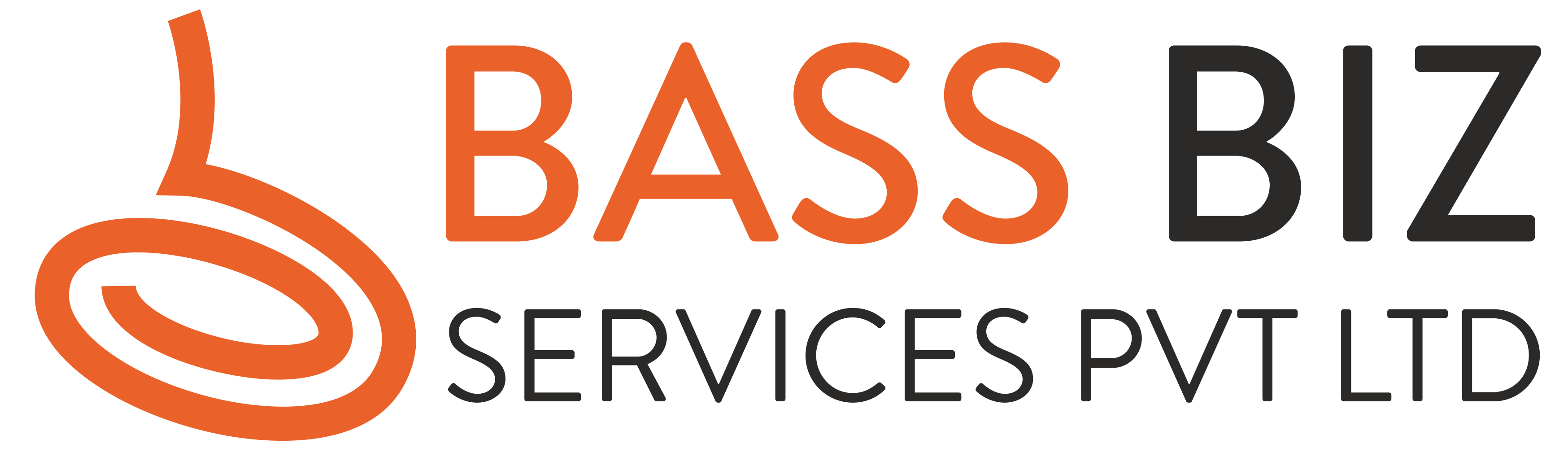 BASS BIZ SERVICES PVT LTD