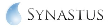 SYNASTUS MULTICONSULTING PRIVATE LIMITED