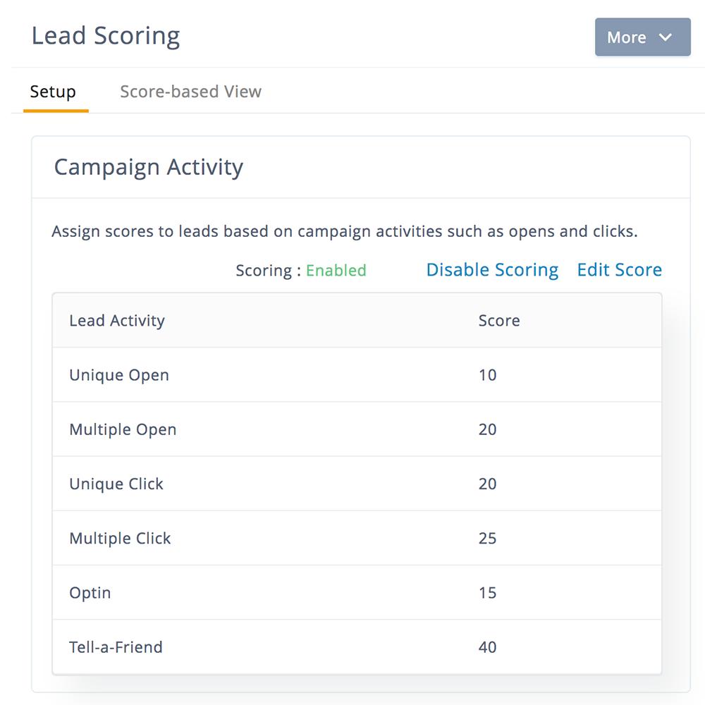 Lead qualification