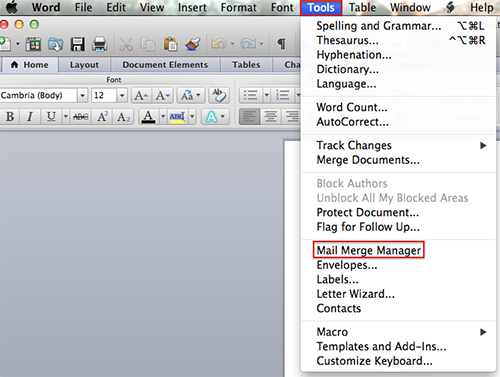 Resume In Ms Word File